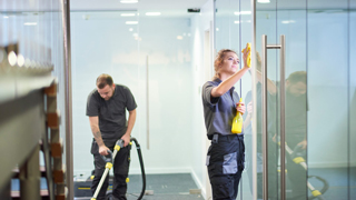 Cleaning Company Cleaning for Appearance or Health